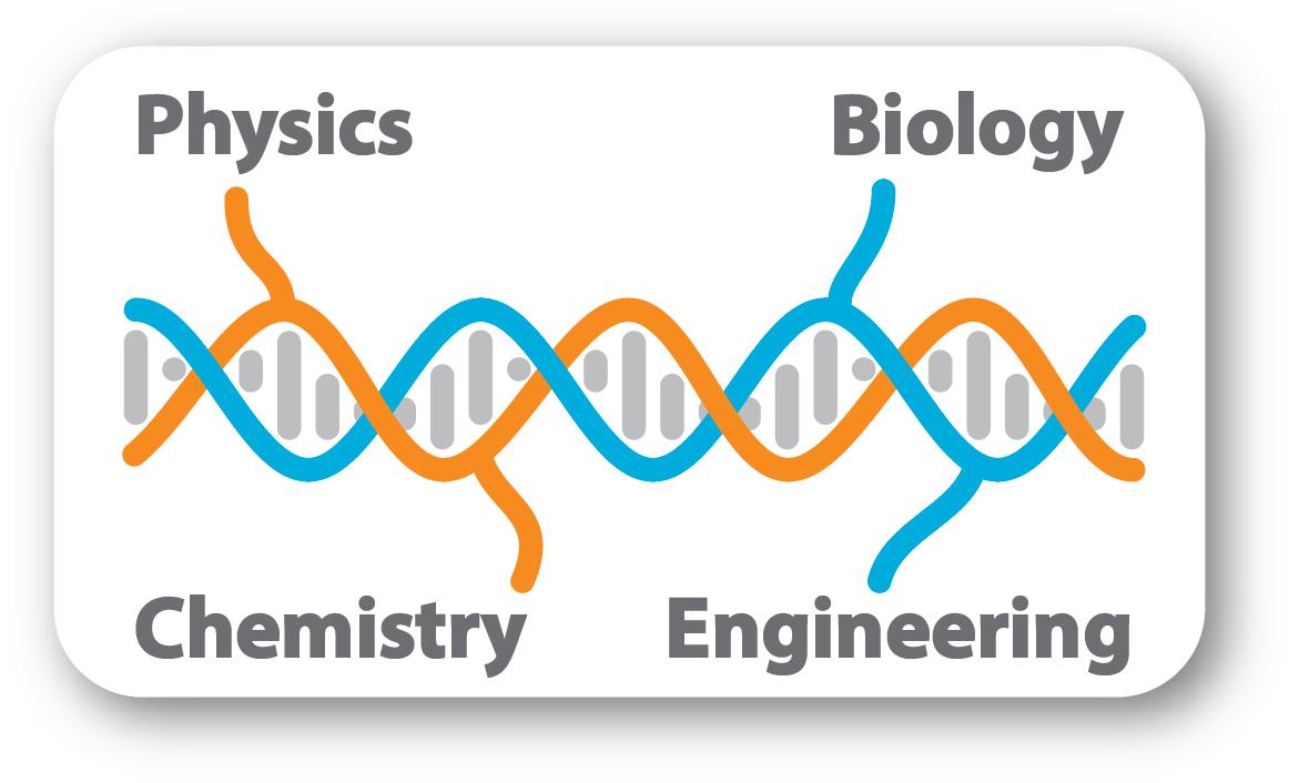 Schmidt Lab Experimental Biophysics, Biology, Chemistry