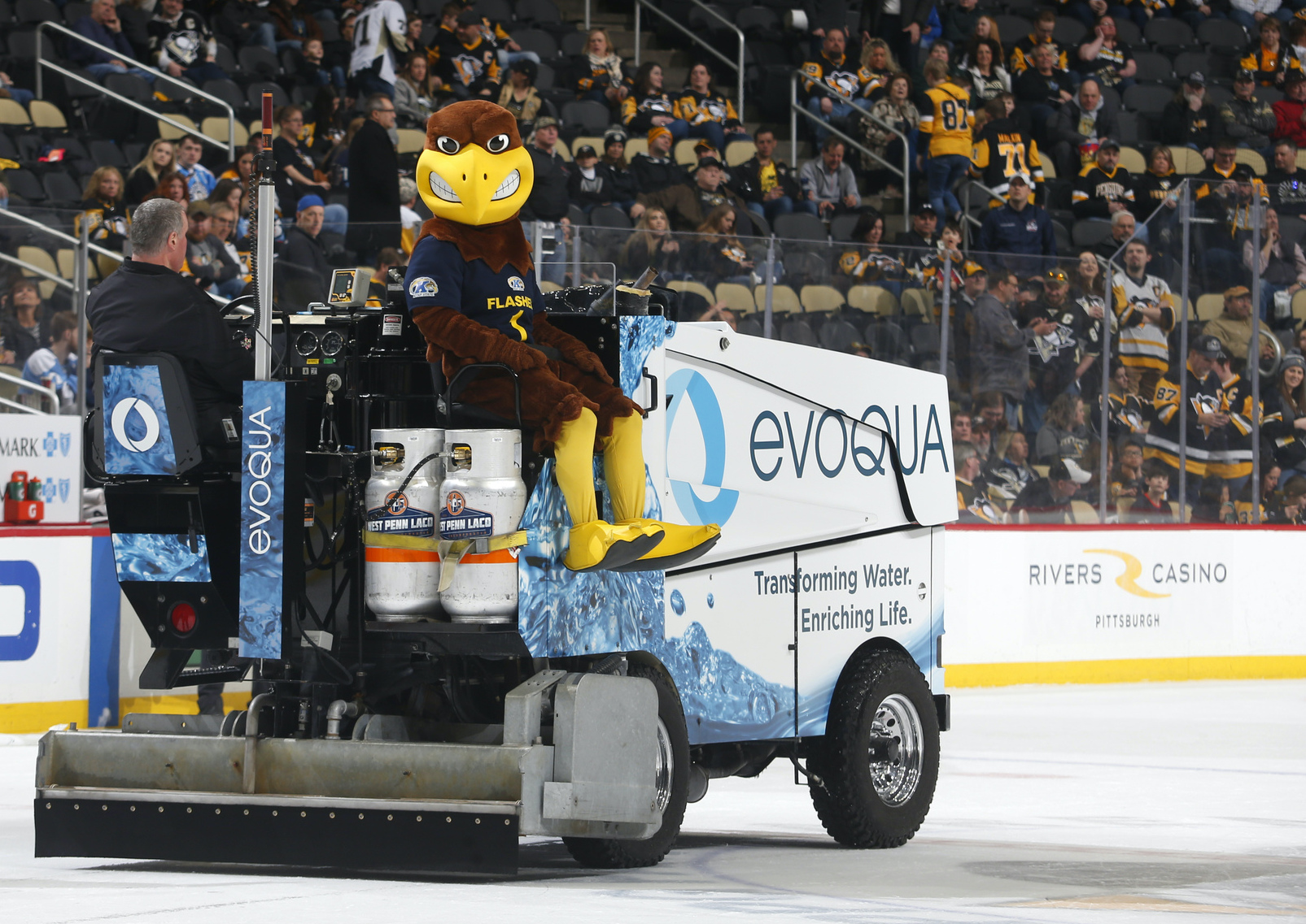 Kent State's Flash ridiing the Zamboni at PPG Paints Arena in Pittsburgh