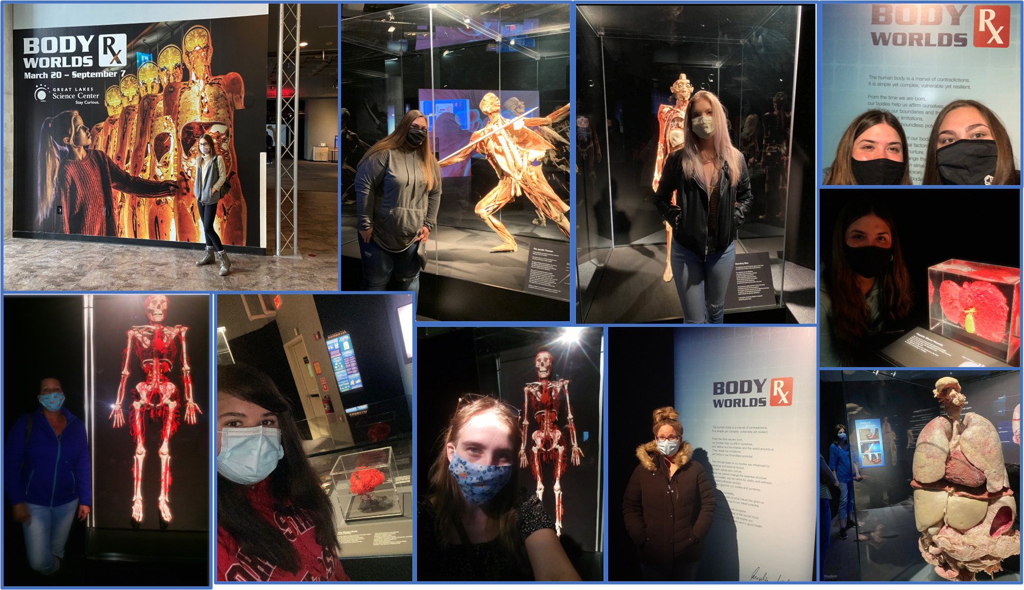 Students at Body Worlds RX Exhibit
