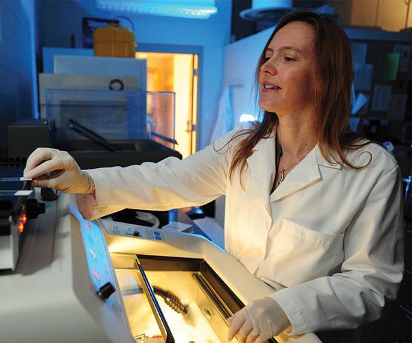 Heather Caldwell, PhD
