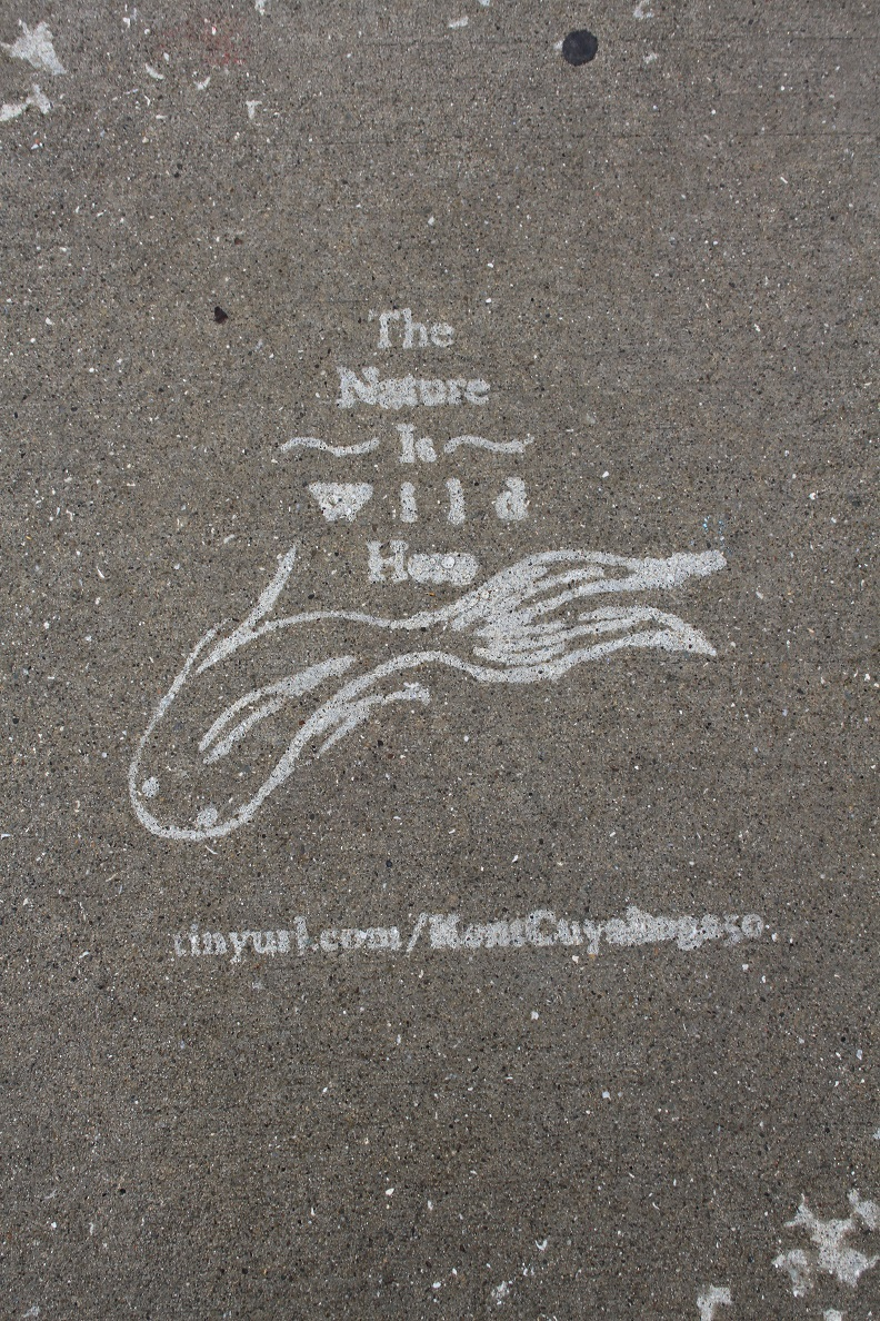 The Nature is Wild Here Design