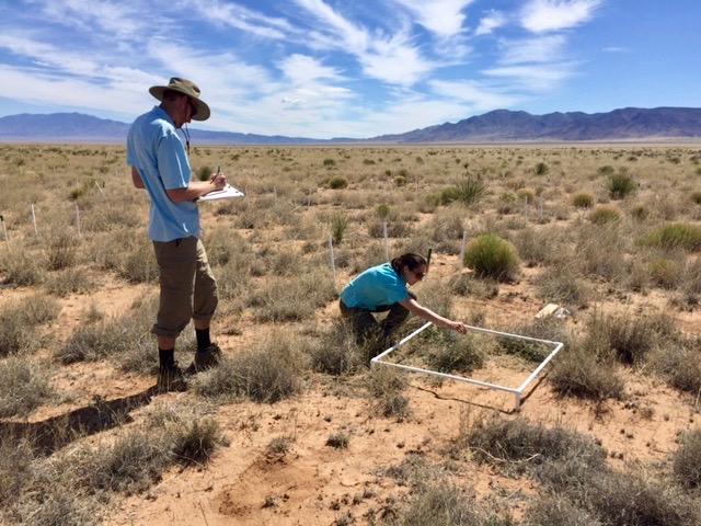Christian Combs and Lauren Baldarelli surveying in the desert