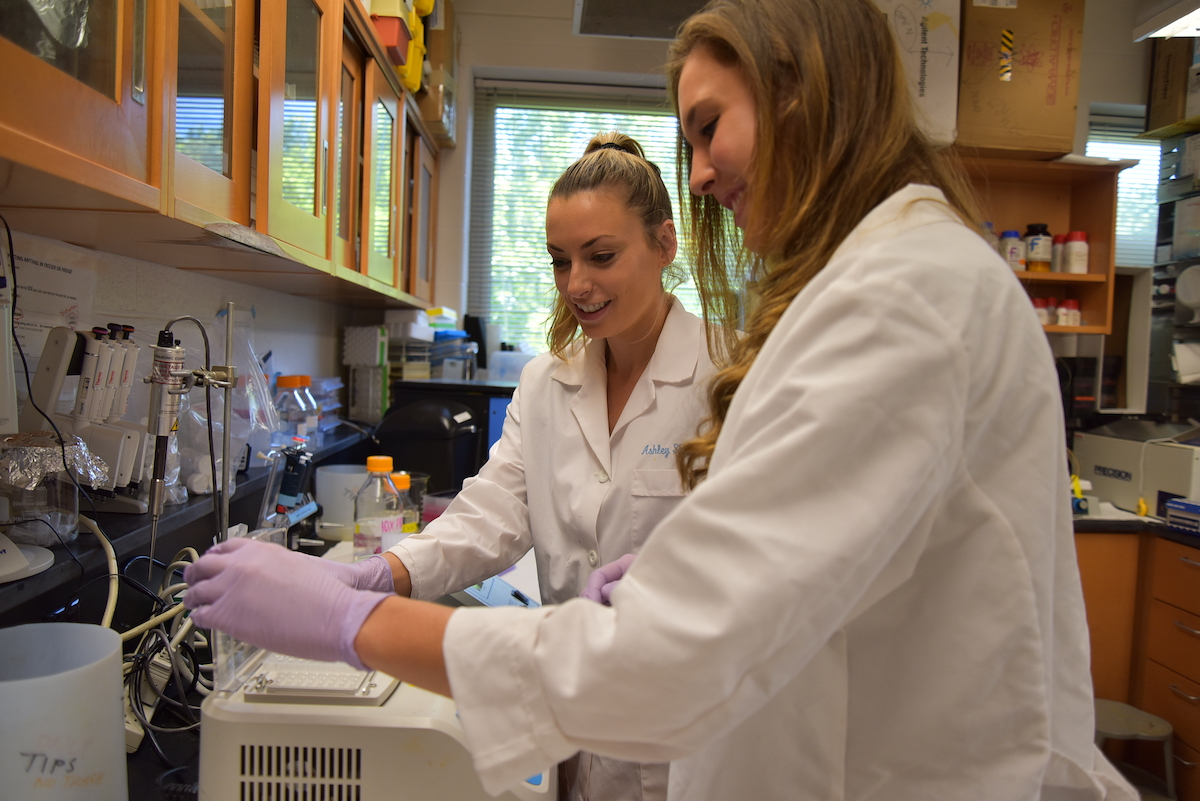 Two female undergraduates work in a research lab during the Summer Undergraduate Research Experience (SURE)