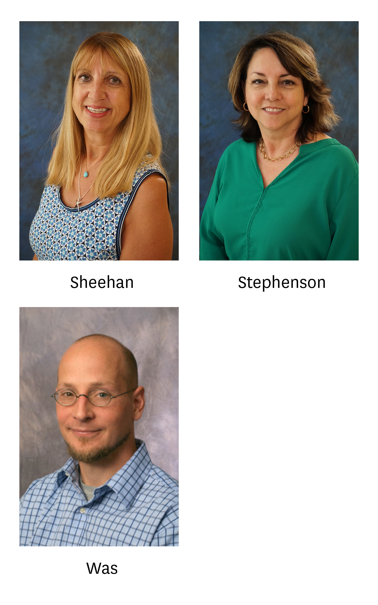 Headshots of Drs. Sheehan, Stephenson and Was.