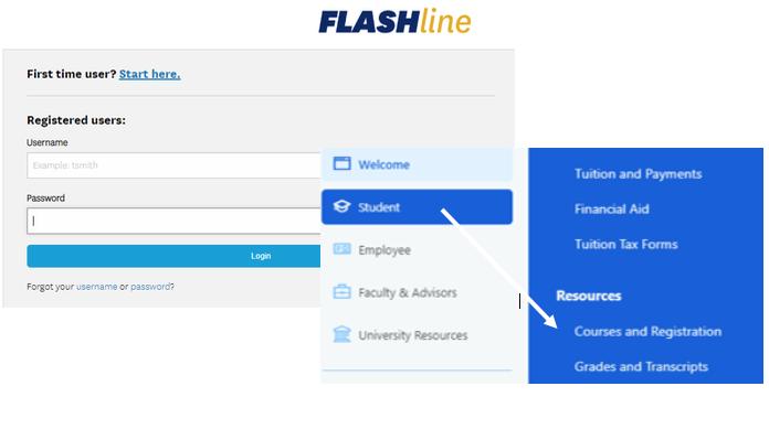 Flashline Image
