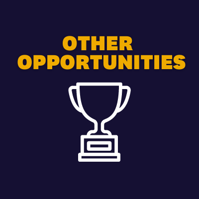 Other opportunities button