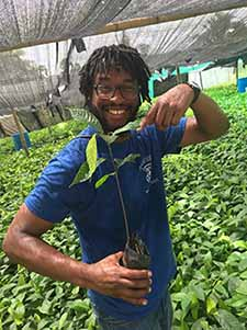 Christopher Thompson holding a cocoa seedling