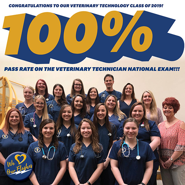 Vet Tech students earn 100% passage rate