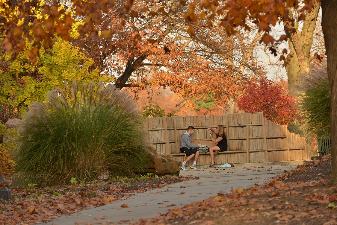Two Kent State University students sit beneath the trees at the Behind the Brain Plaza along Terrace Drive on the Kent Campus.