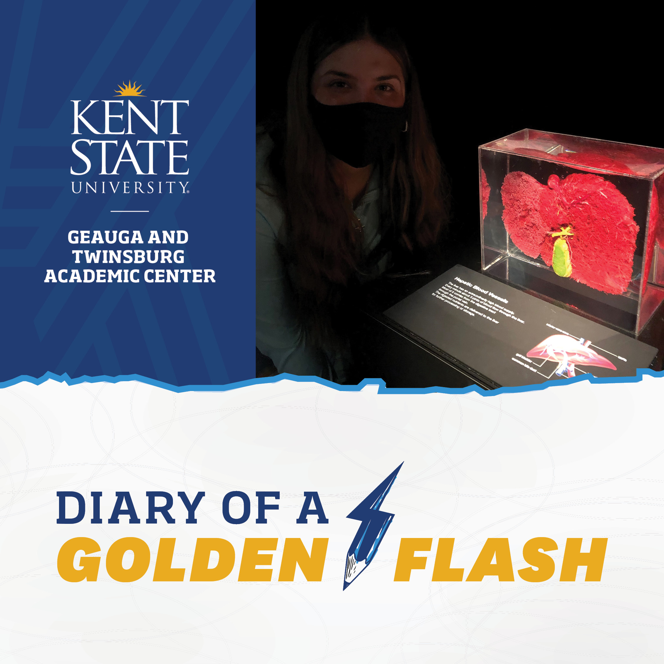 Diary of a Golden Flash Vladis Alimova