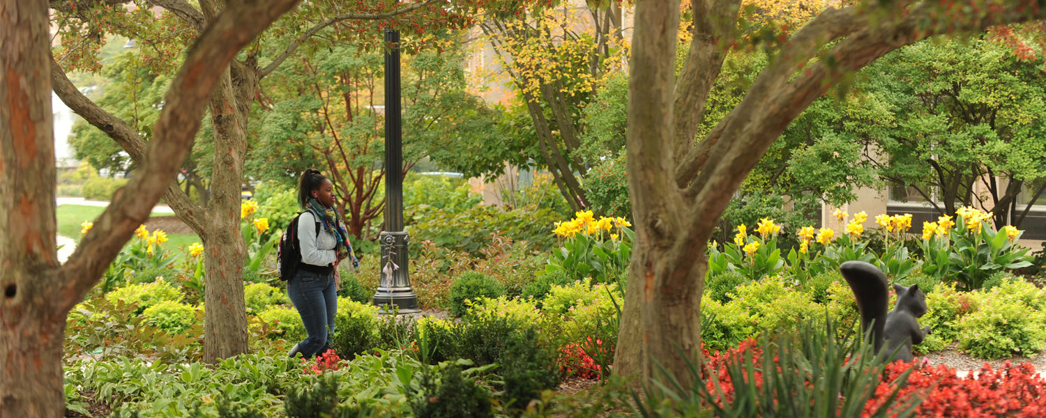 Kent State University Recognized as Tree Campus USA for 11 Consecutive Years