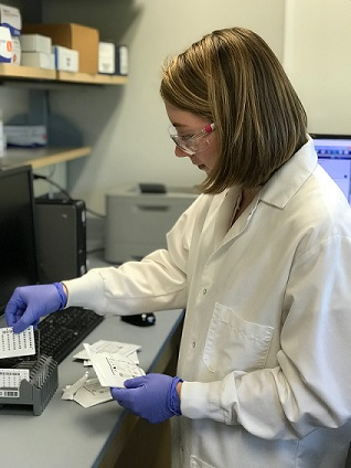 ASM undergrad fellow Gerbig tests for Staphylococcus in the lab