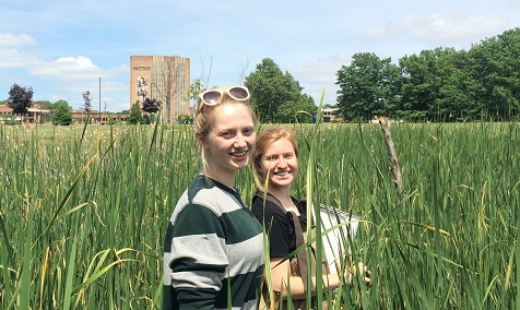 Students in an urban wetland