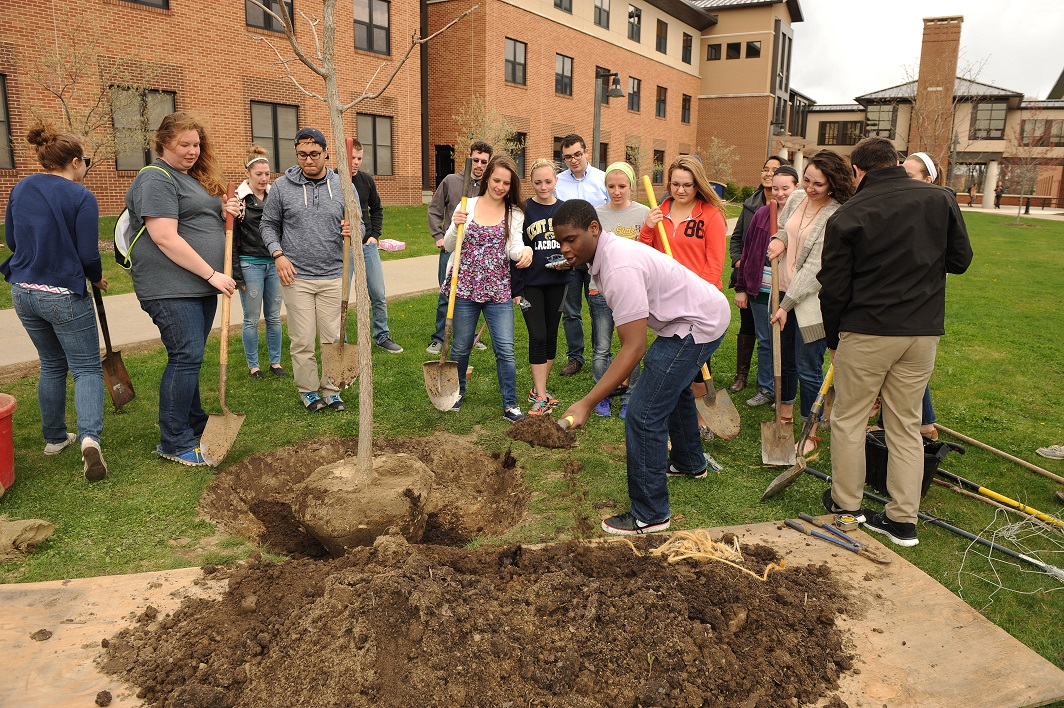 Photo of Kent State students planting a tree for Arbor Day