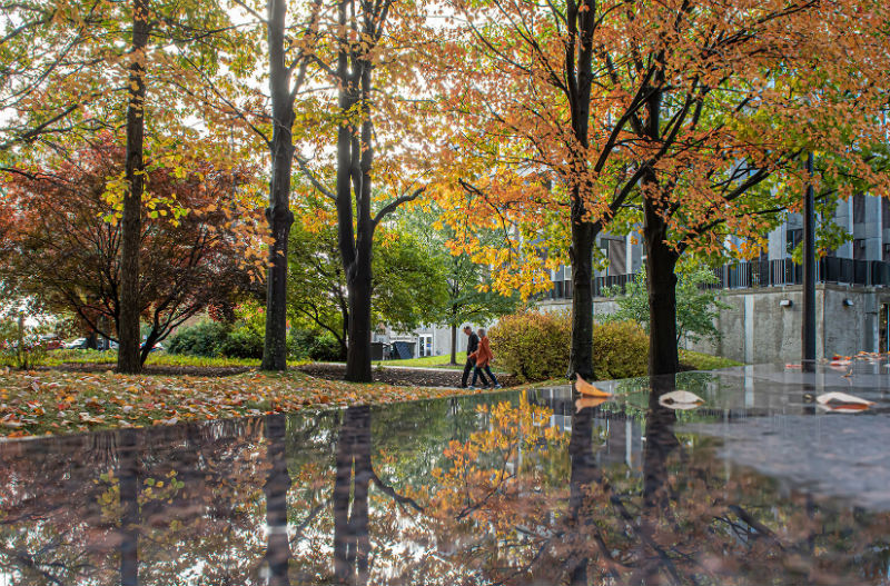 A seasonal symphony of fall colors on campus, as reflected atop the May 4 Memorial, near Taylor Hall.