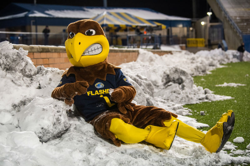 Kent State Golden Flashes mascot Flash sits in a pile of snow.