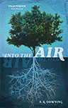 INTO THE AIR BY AIMEE DOWNING