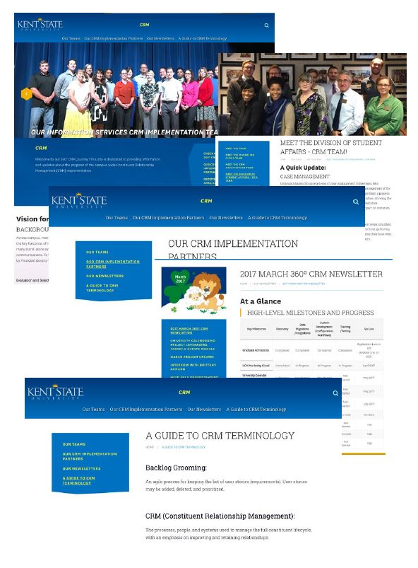Compiled Screen-Shots of various pages of the CRM Website
