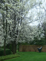 Orchestral Garden