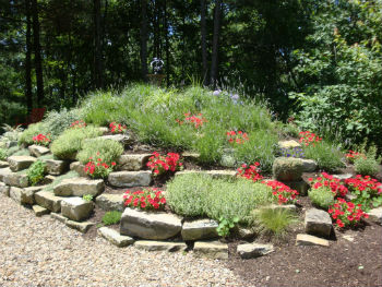 Chapel Rock Garden