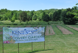 The Discovery Garden at Kent State University at Salem is an outdoor classroom where individuals can learn, grow, live and laugh.