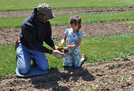 Maurice Peoples, horticultural facilities coordinator at Kent State University at Salem, works in the Discovery Garden with Lisa Merrick, 5, whose grandmother, Kim Merrick, is a student earning her bachelor of applied horticulture degree.