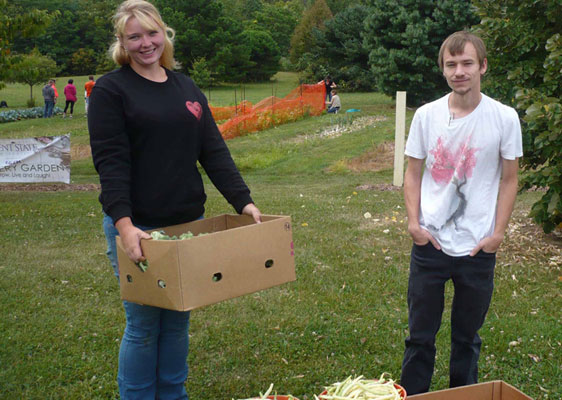 Kent State Salem students (from left) Gabriell Vogel and Marshall Somerville helped harvest vegetables from the Discovery Garden that were donated to the Salem Food Pantry.