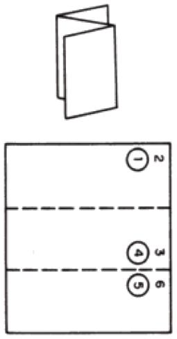 Fan Fold Mailpiece/letter
