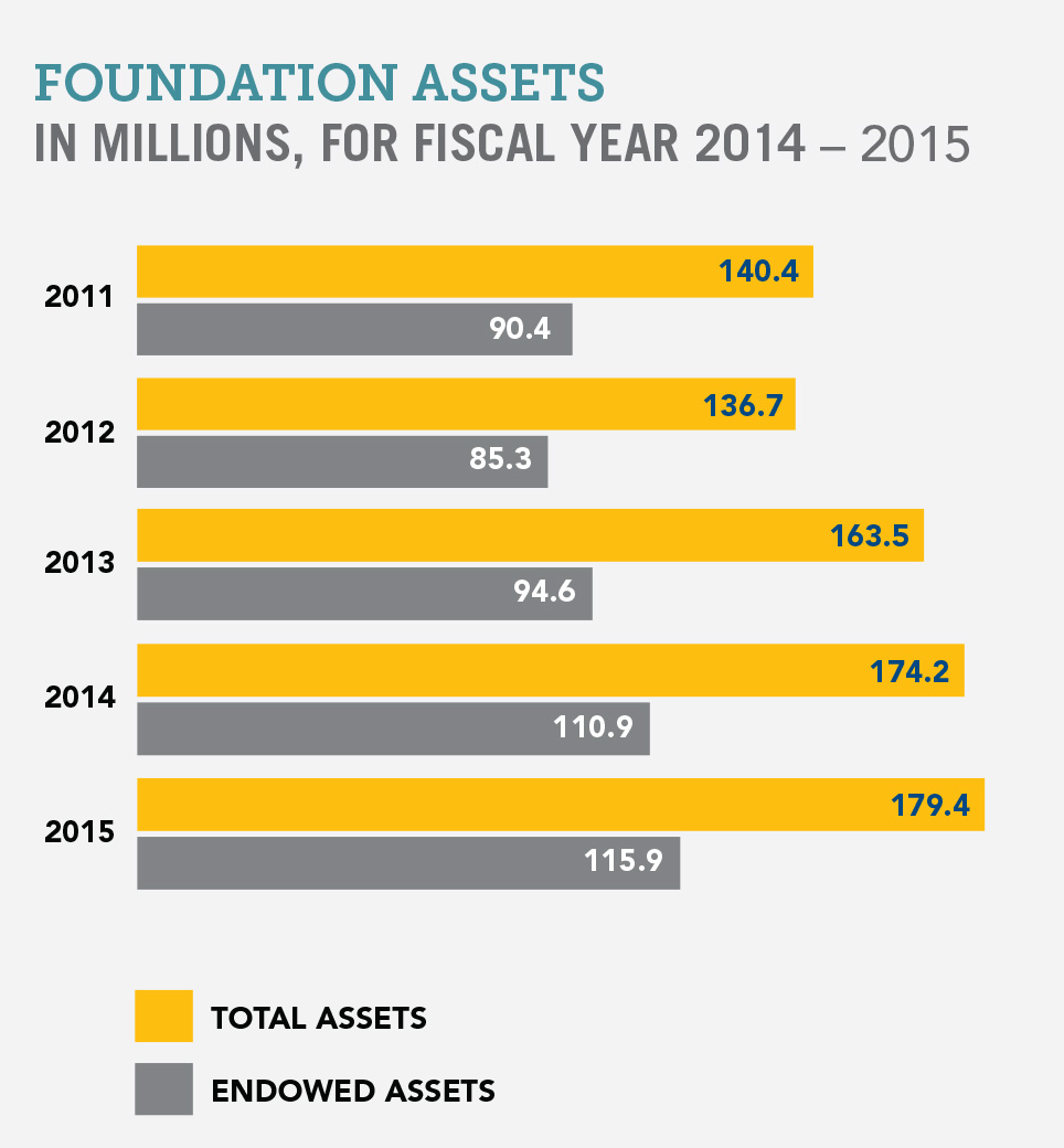 Foundation Assets Chart 2014-2015