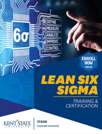 Lean Six Sigma brochure 2019-20
