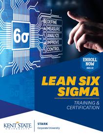 Lean Six Sigma Brochure image 2021-22