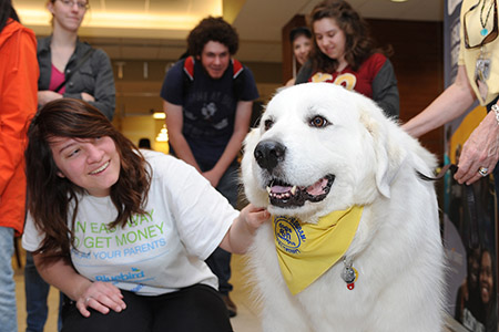University Library will hold its semiannual Stress-Free Zone for students on Monday, May 8, and Tuesday, May 9, from 3-5 p.m., which includes a visit from therapy dogs.
