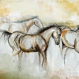 Illustration by Zuzana Kubišová '17