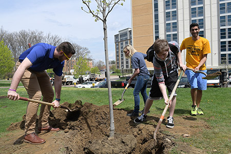 On April 21, students and staff gathered behind Korb Hall to plant a New World Red Maple to honor Kent State's commitment to tree care and environmental sustainability.