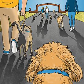 Alumni Dog Walk illustration by Jason Zehner '10
