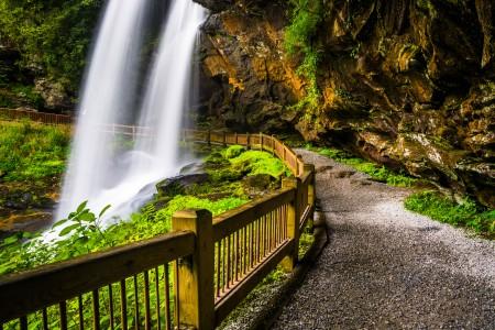 Waterfall web Image