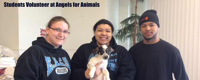 Madison Capito, Sarah Fusco, and Saun Cleckly volunteer at Angels for Animals