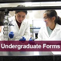 Undergraduate Forms