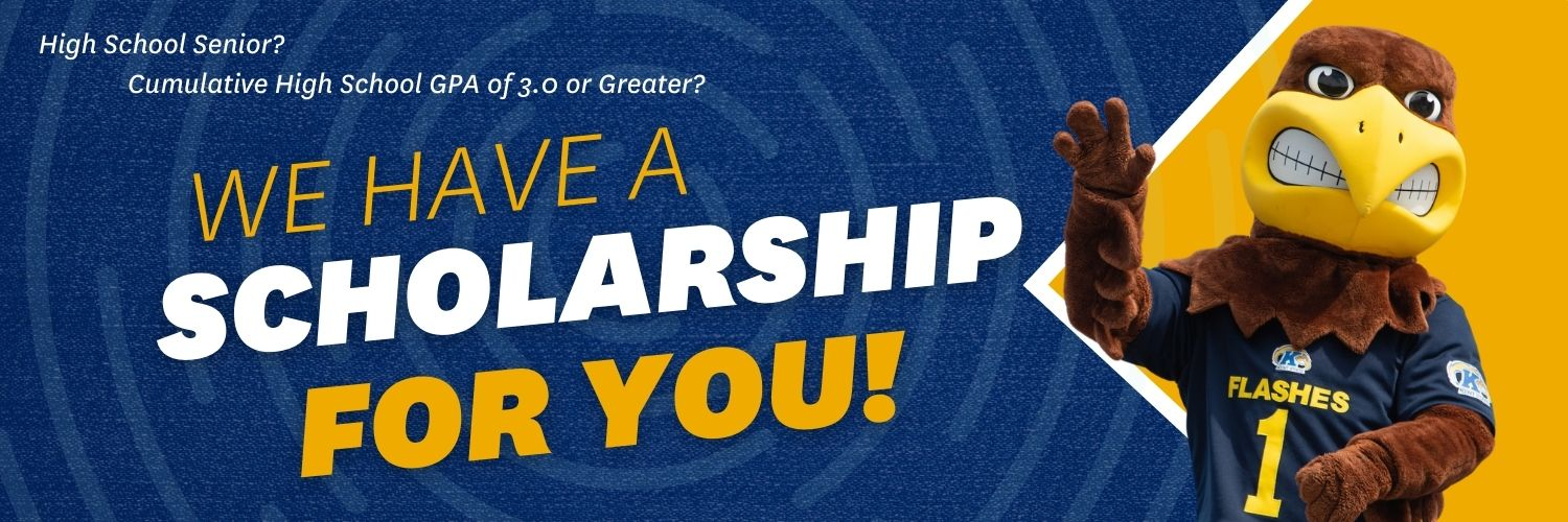 Scholarship Banner with Flash