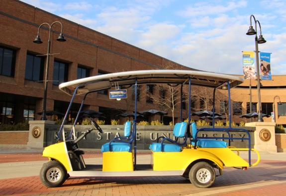 Goal cart