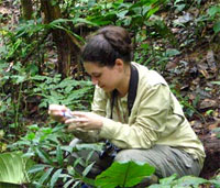 MA student collecting data, Brownsberg, Suriname.