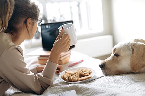 Program Participant and Dog at Computer