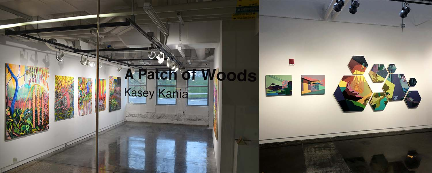 Paintings installed in the gallery