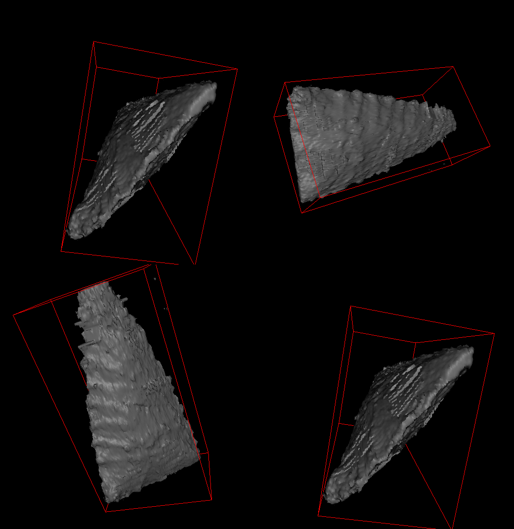 Surface Reconstructed Arrowhead