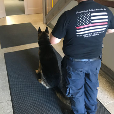 An officer and his K9 partner prepare to search.