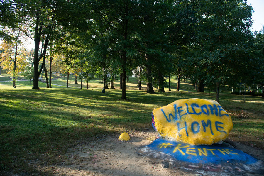 The Rock on Kent State's Front Campus painted for Homecoming