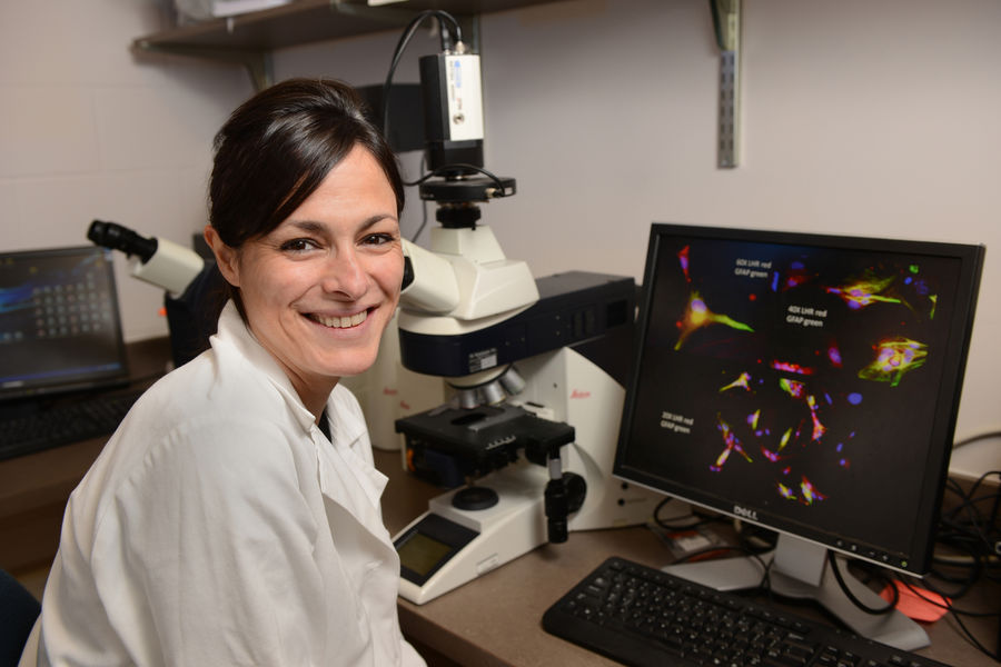 Gemma Casadesus Smith, an associate professor in Kent State's Department of Biological Sciences, has been awarded a five-year, $1.5 million grant from the National Institute on Aging at the National Institutes of Health.