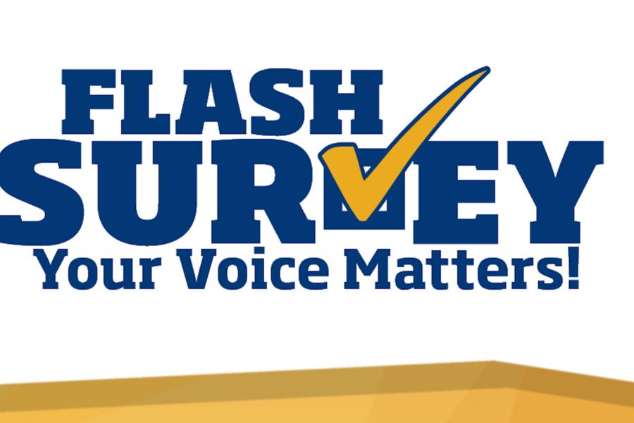 Flash Survey logo