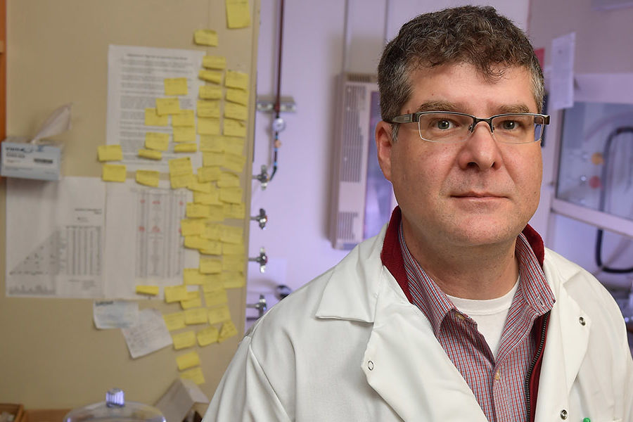 Torsten Hegmann, Ph.D., a chemical physics professor and Ohio Research Scholar in Kent State University's Liquid Crystal Institute®, recently was named a fellow of the Royal Society of Chemistry, one of the top publishing societies in chemistry worldwide.