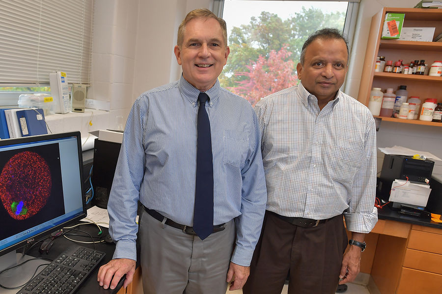 Doug Kline (left) and Srinivasan Vijayaraghavan (right), both professors in Kent State University